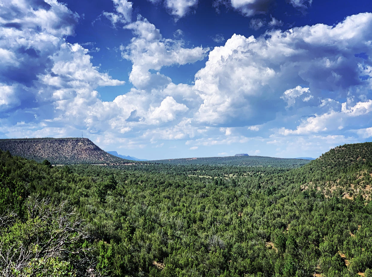 Canada Verde Ranch, Bernal, NM Property Photo - Tecolote, NM real estate listing