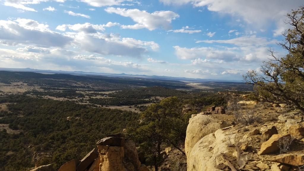 45 Elk Ridge Road Property Photo - Pie Town, NM real estate listing