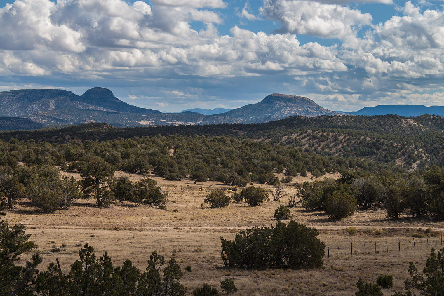U1 Lot 47 Wild Horse Ranch Property Photo - Pie Town, NM real estate listing