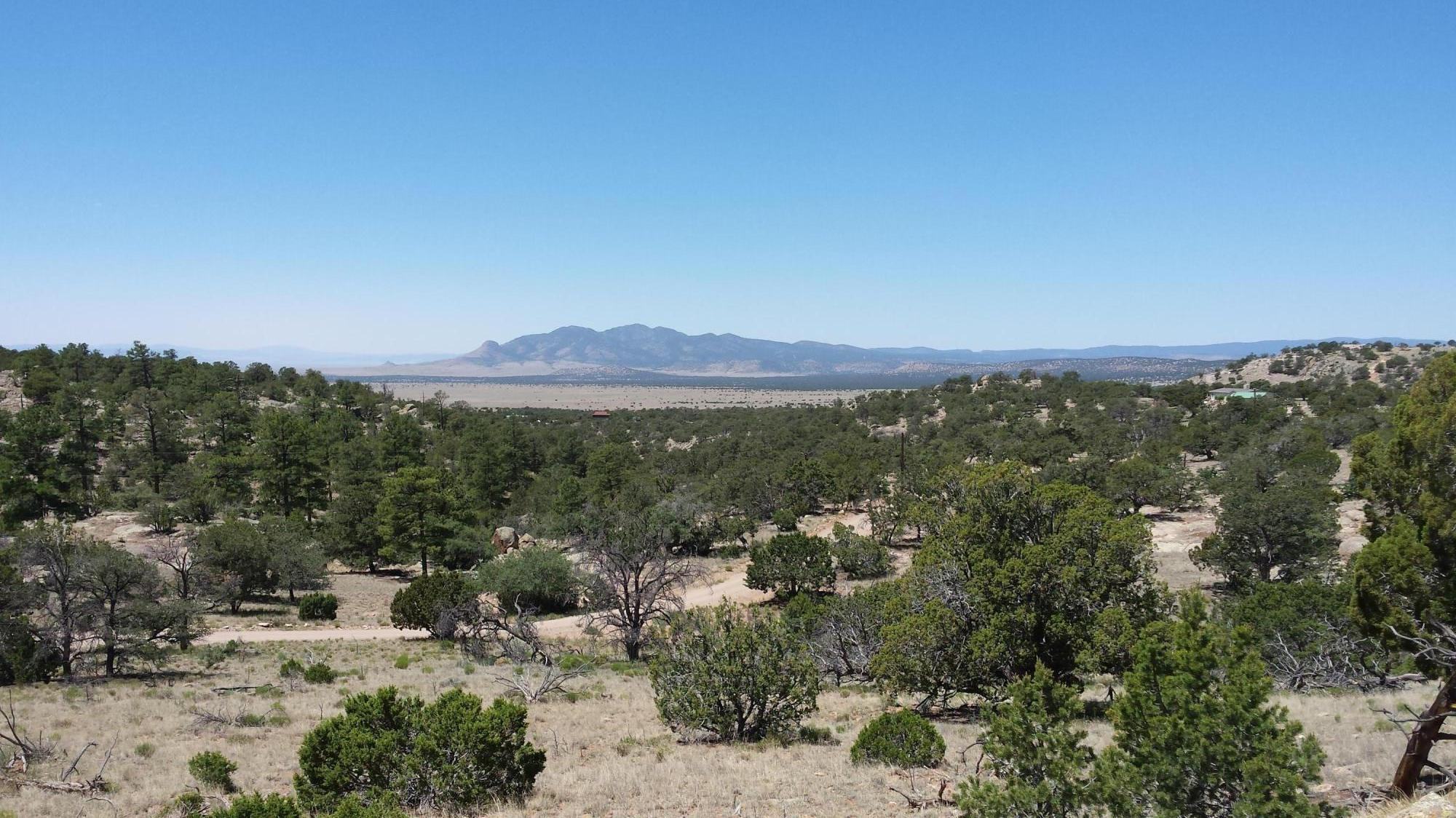 Lot 47 Rock Springs Loop Property Photo - Datil, NM real estate listing