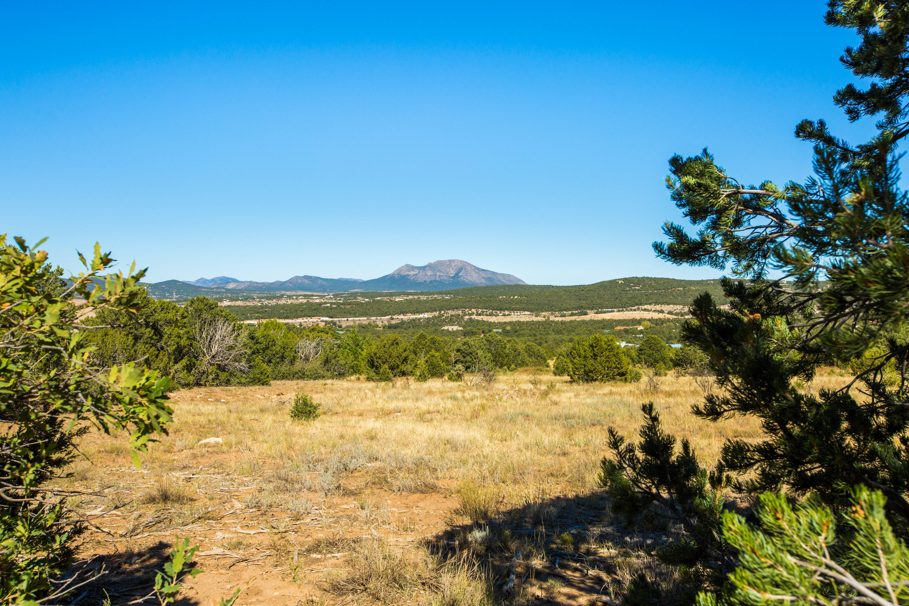 64 Nature Pointe Drive Property Photo - Tijeras, NM real estate listing