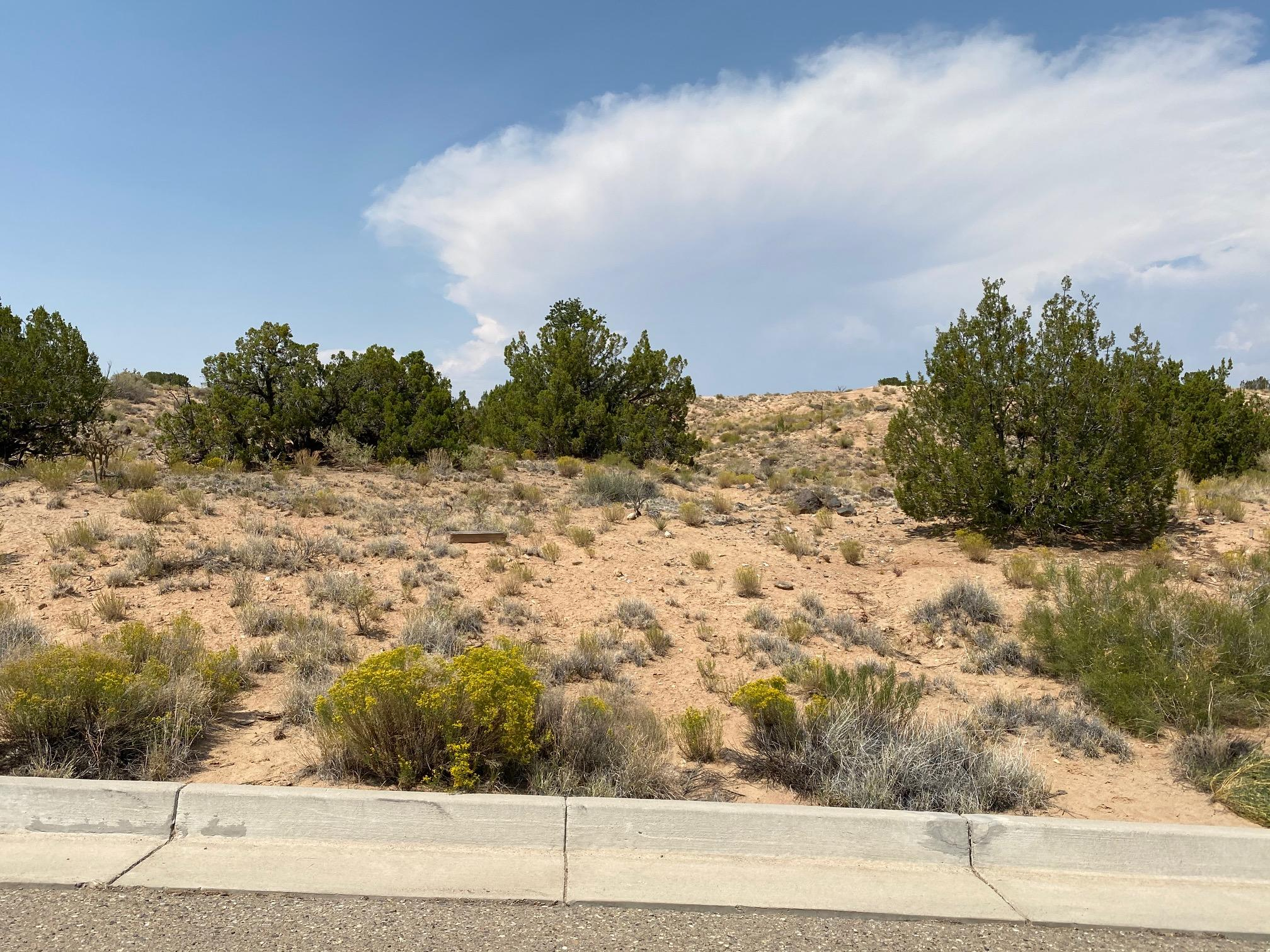 2403 DESERT ZINNIA Road NE Property Photo - Rio Rancho, NM real estate listing