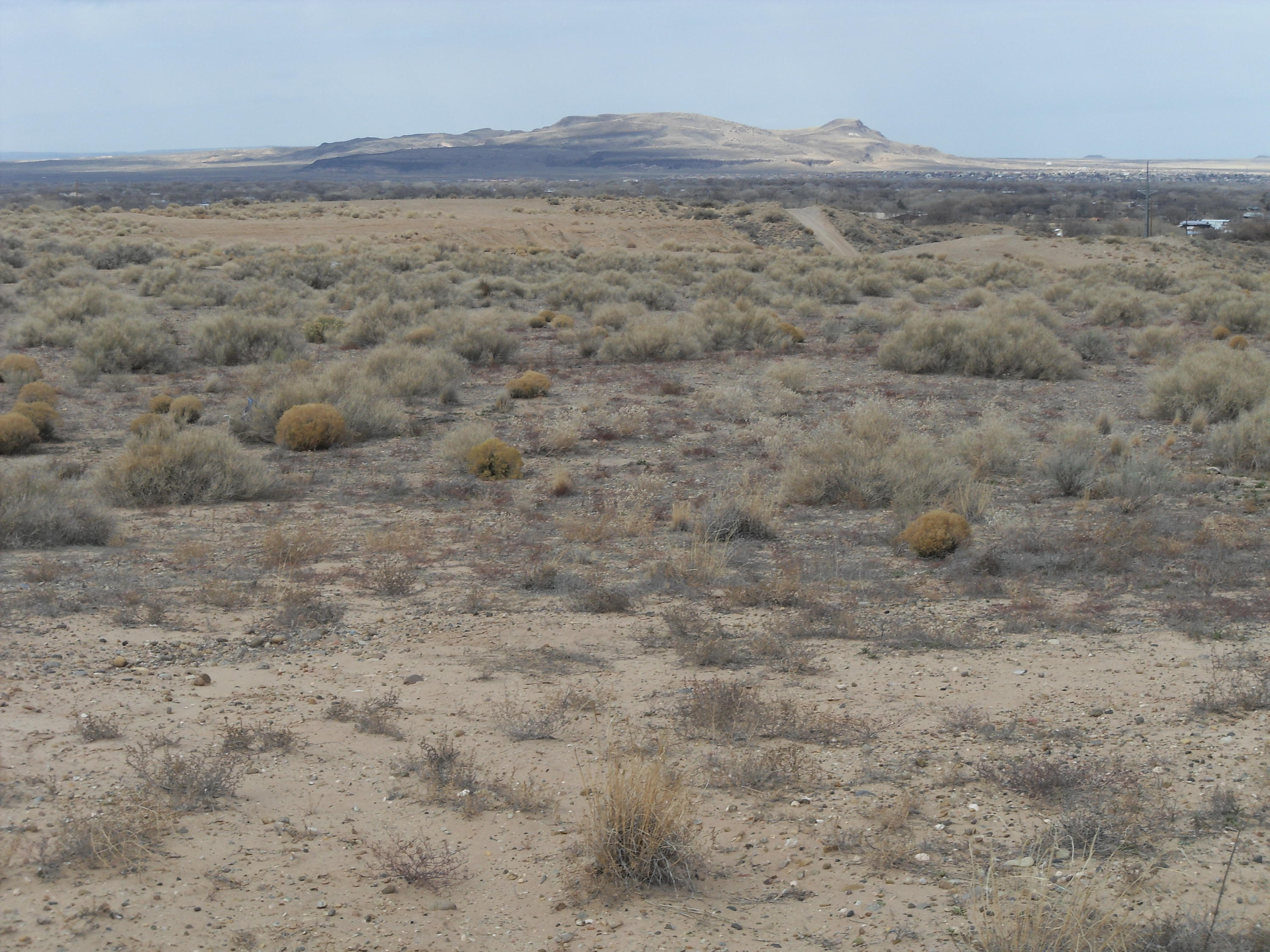 Lands Of Hissa 32 Acres Real Estate Listings Main Image
