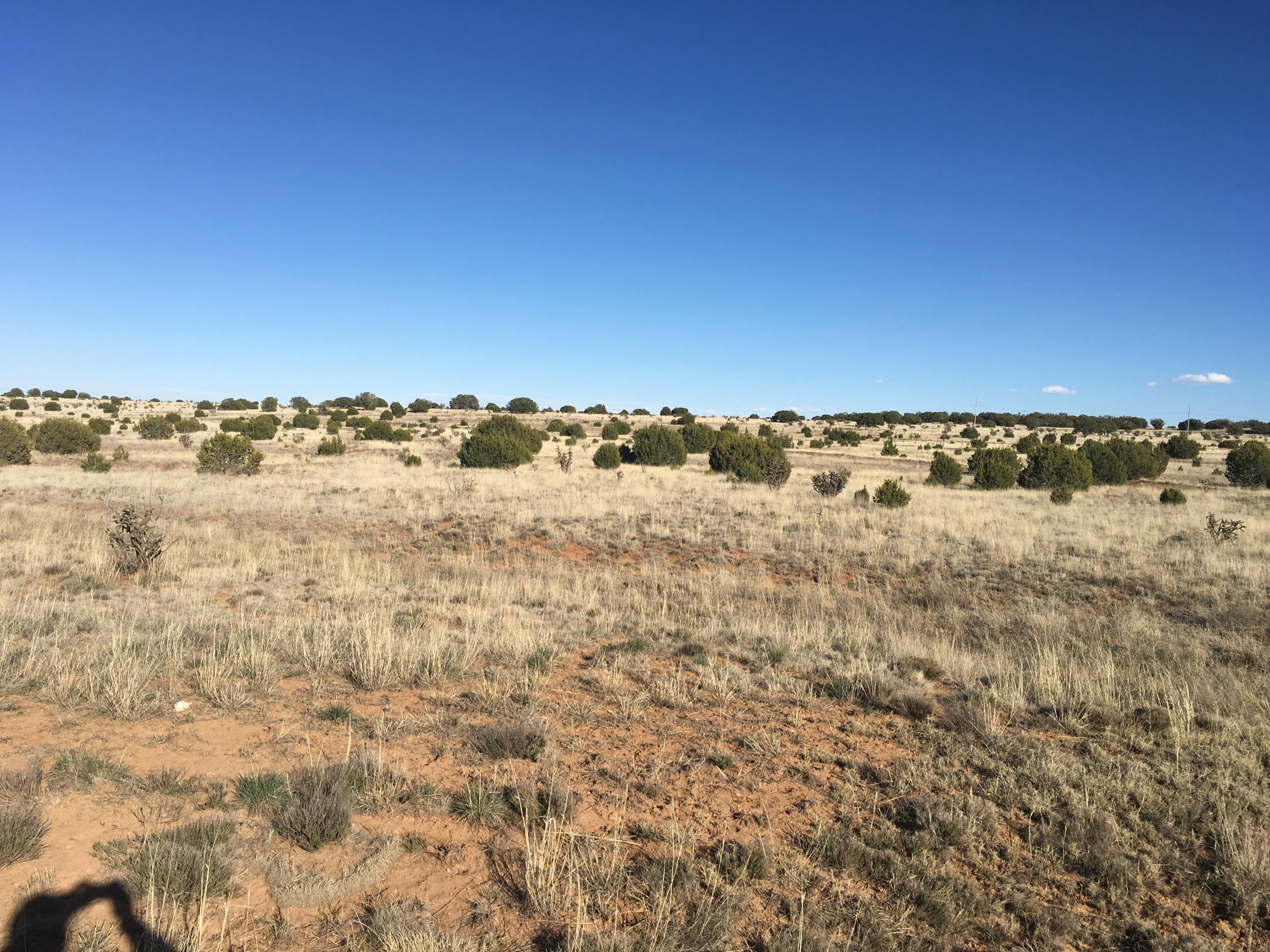 Mission Hills Road Property Photo - Estancia, NM real estate listing