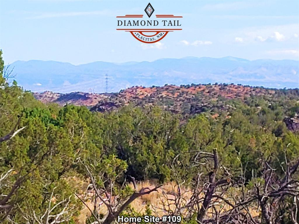 230 Cornflower Court Property Photo - Placitas, NM real estate listing