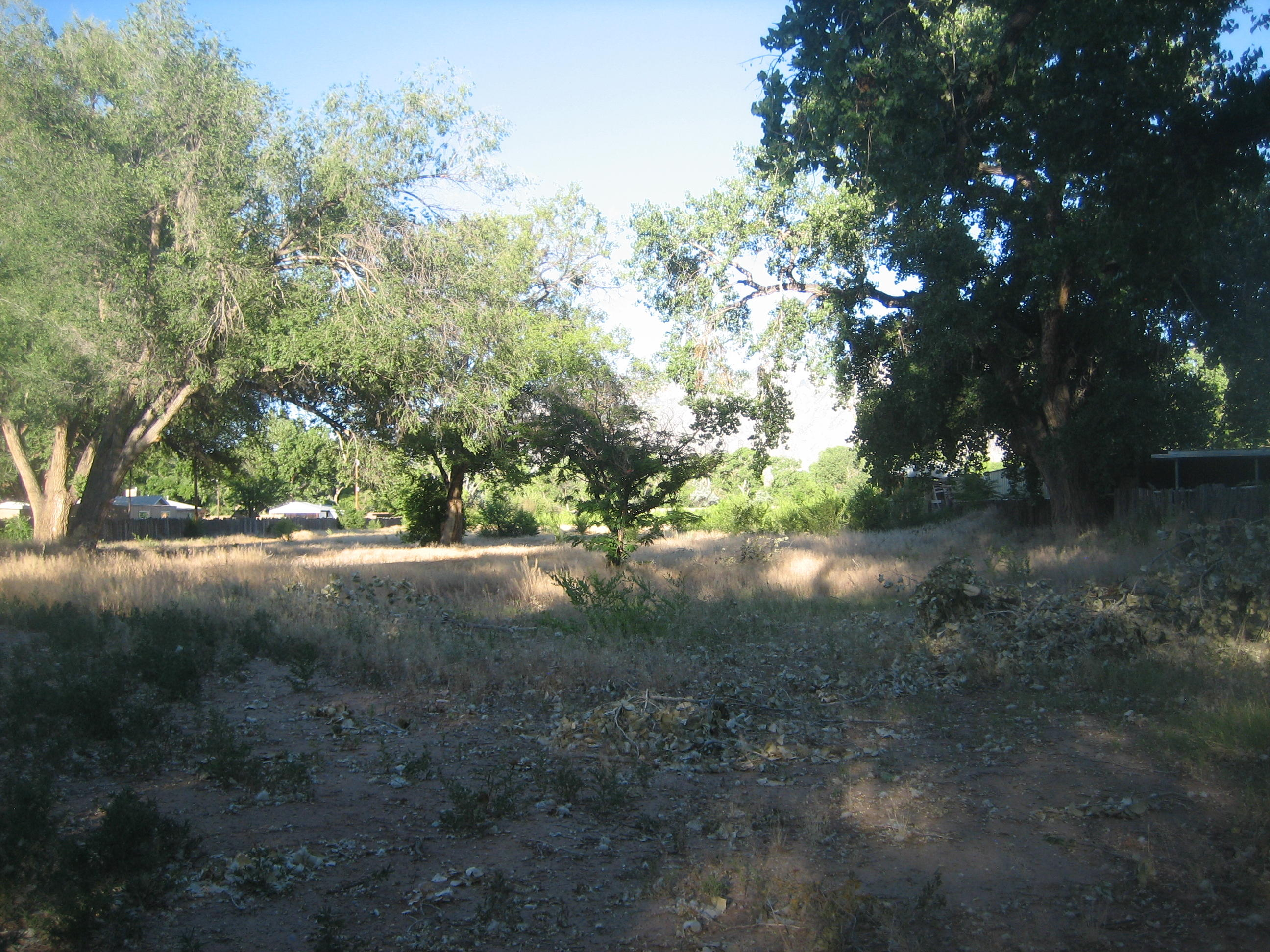7648 Corrales Road Property Photo - Corrales, NM real estate listing