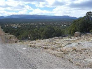 231- Manzano Mountain Real Estate Listings Main Image