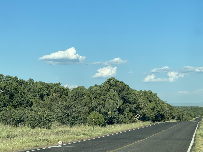 10060 Track B-4 NM 337 Property Photo - Chilili, NM real estate listing