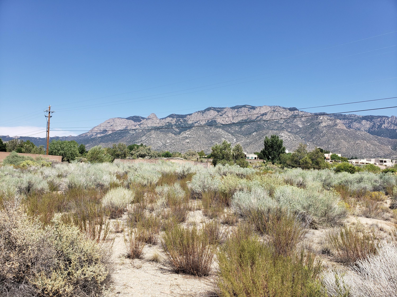Corona Avenue NE Property Photo - Albuquerque, NM real estate listing