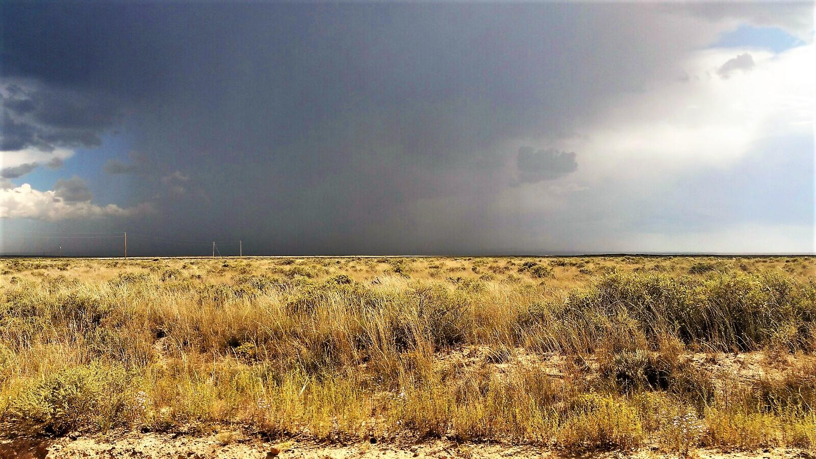 5 Palomino Drive, Lot 5 Drive Property Photo - Moriarty, NM real estate listing