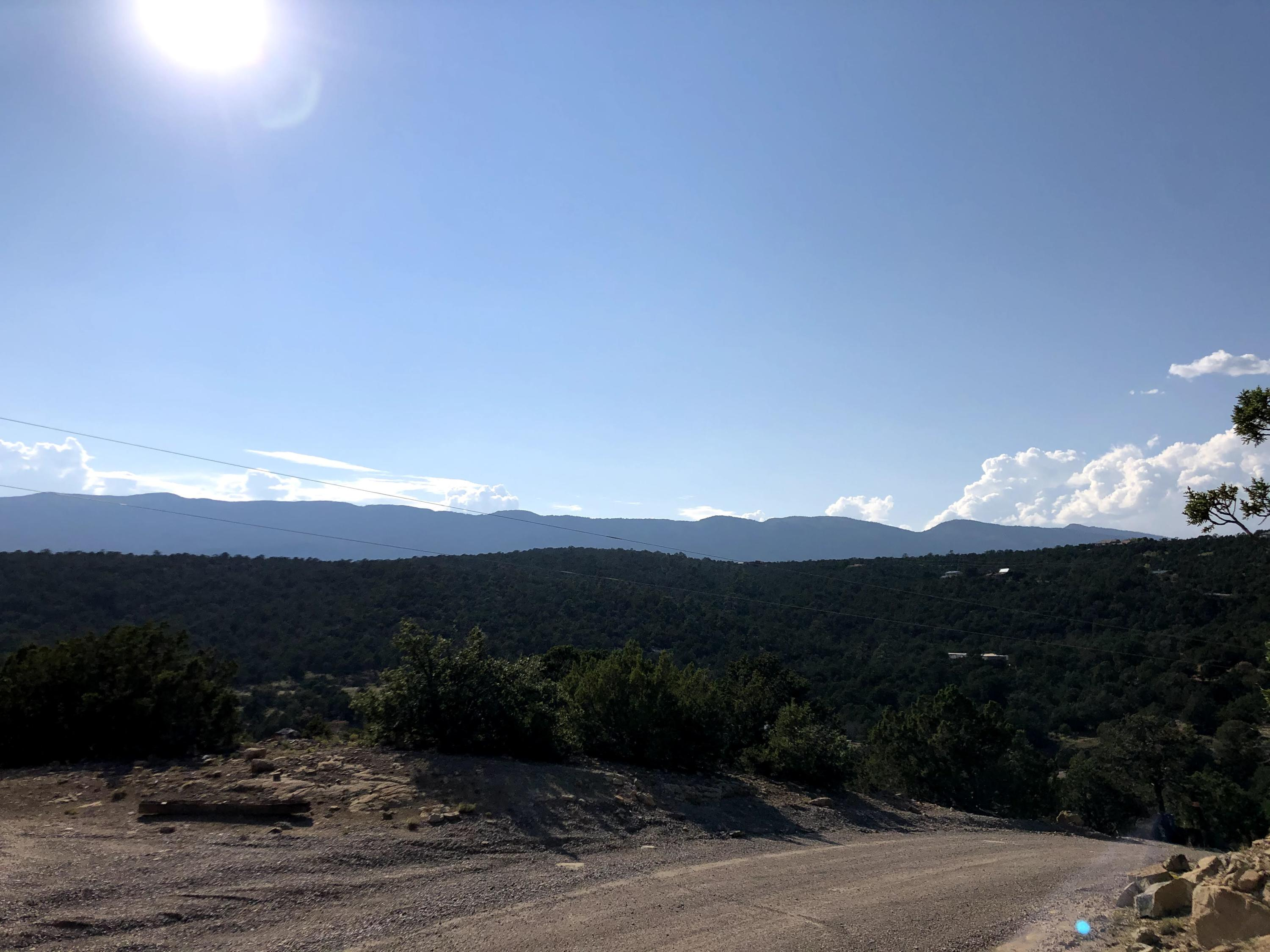 Lost Valley Loop Property Photo - Cedar Crest, NM real estate listing