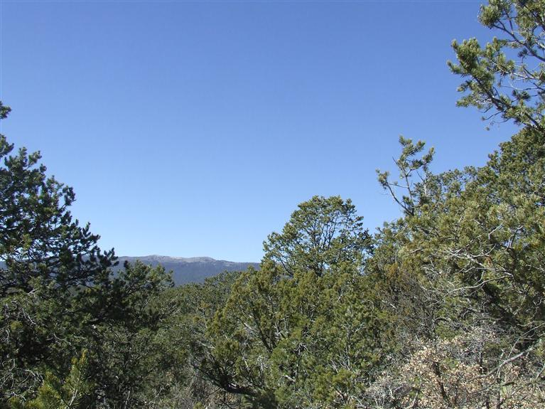 91 LOST VALLEY Loop Property Photo - Cedar Crest, NM real estate listing