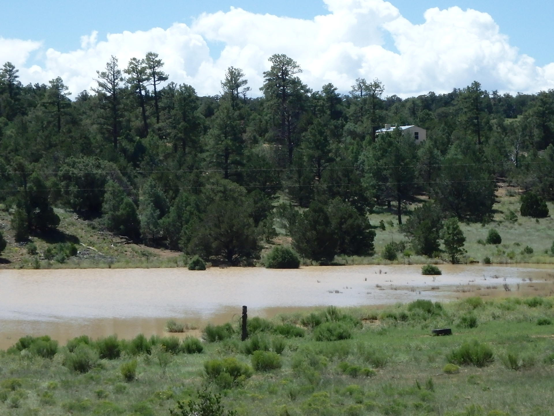 Hunting Retreat Property Photo - Grants, NM real estate listing