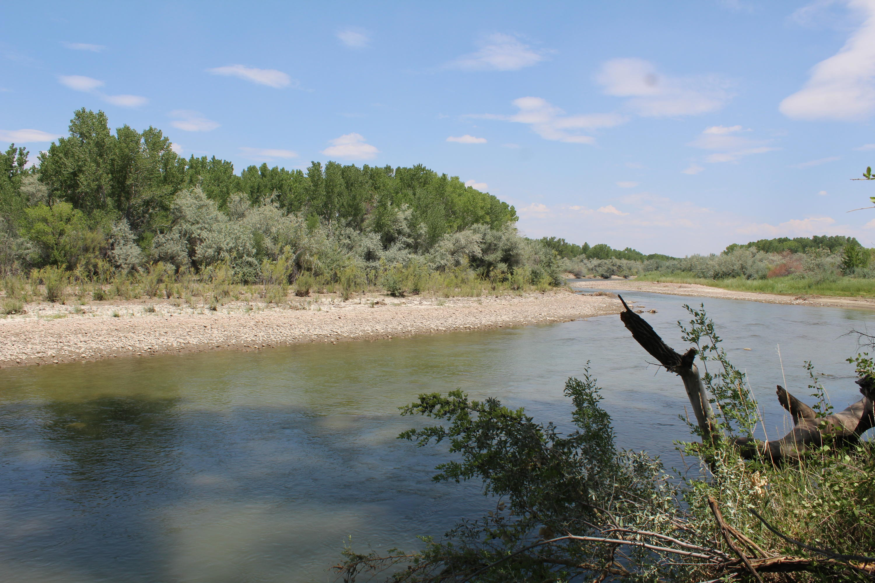 Animas River Property Property Photo - Aztec, NM real estate listing