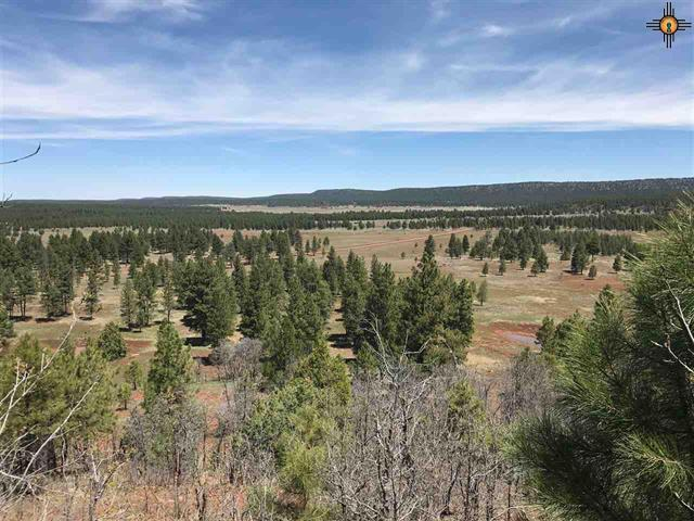 0 Mc Gaffey Property Photo - Grants, NM real estate listing