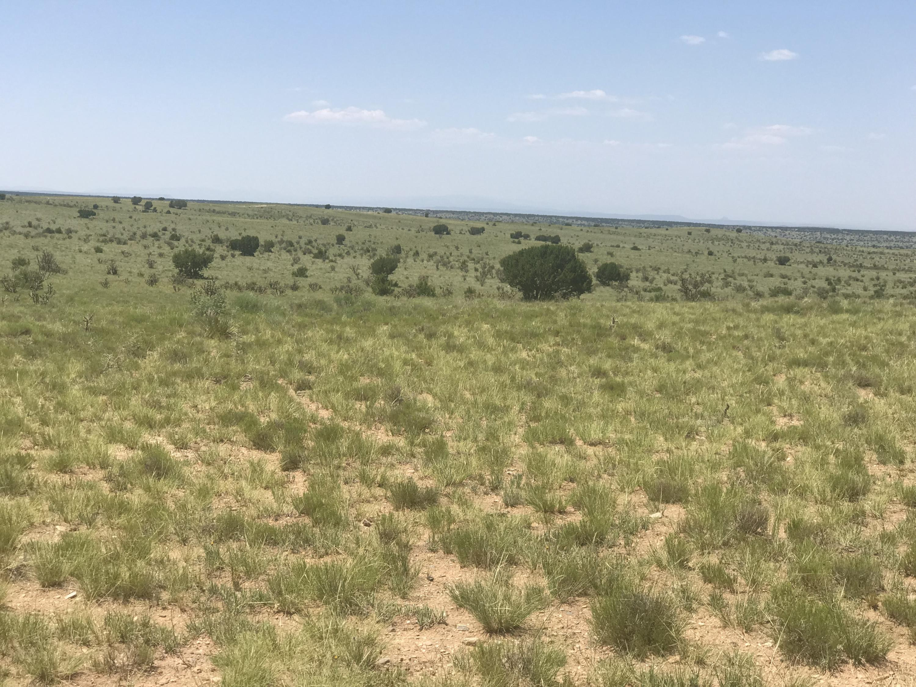 0 Western Run Road Property Photo - Santa Rosa, NM real estate listing
