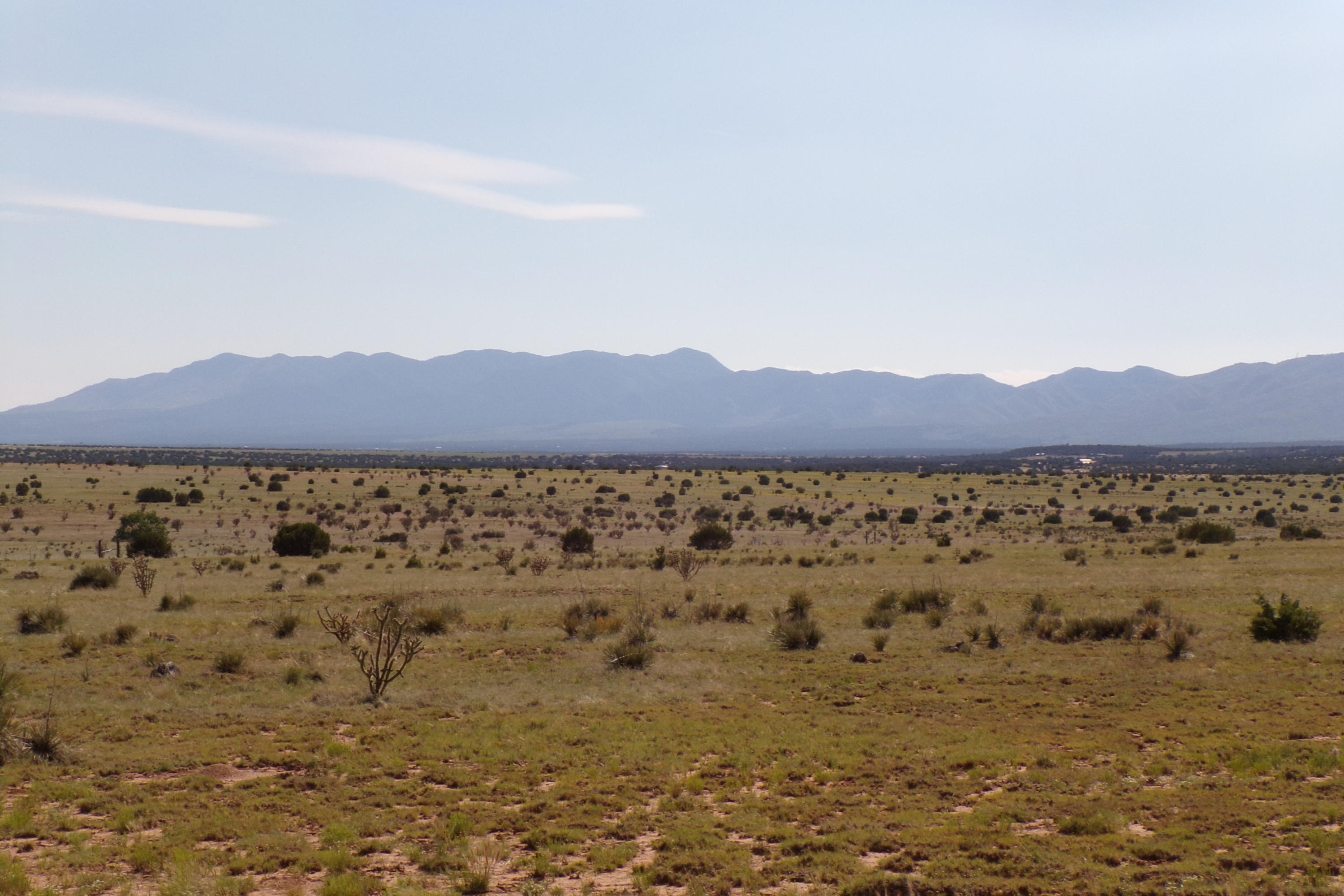 NM Hwy 55 Property Photo - Tajique, NM real estate listing