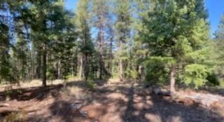 LOS GRIEGOS Road Property Photo - Jemez Springs, NM real estate listing