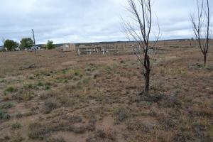 28 PENNY Lane Property Photo - Moriarty, NM real estate listing