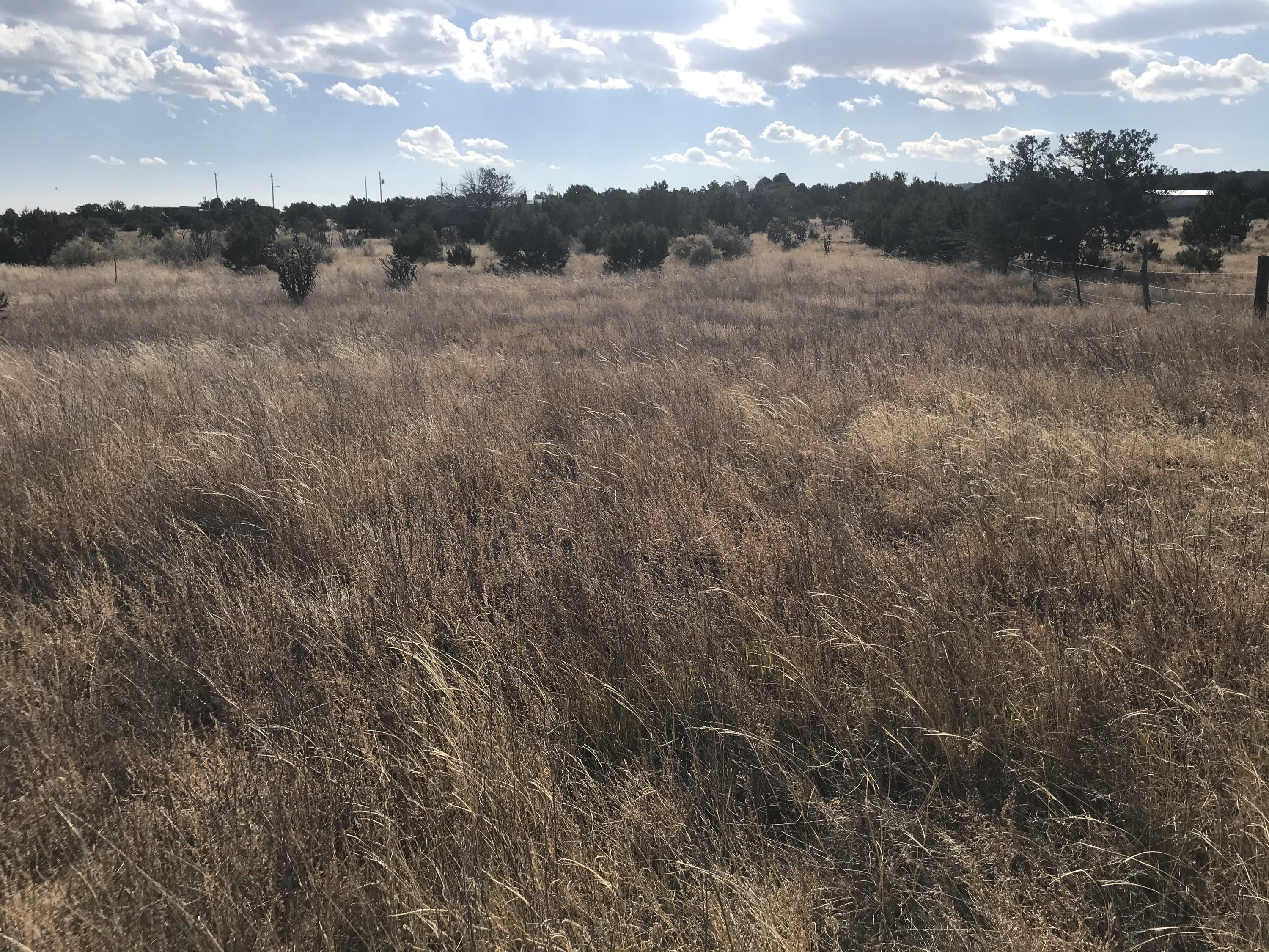 Lot 58 Indian Hills Road Property Photo - Moriarty, NM real estate listing