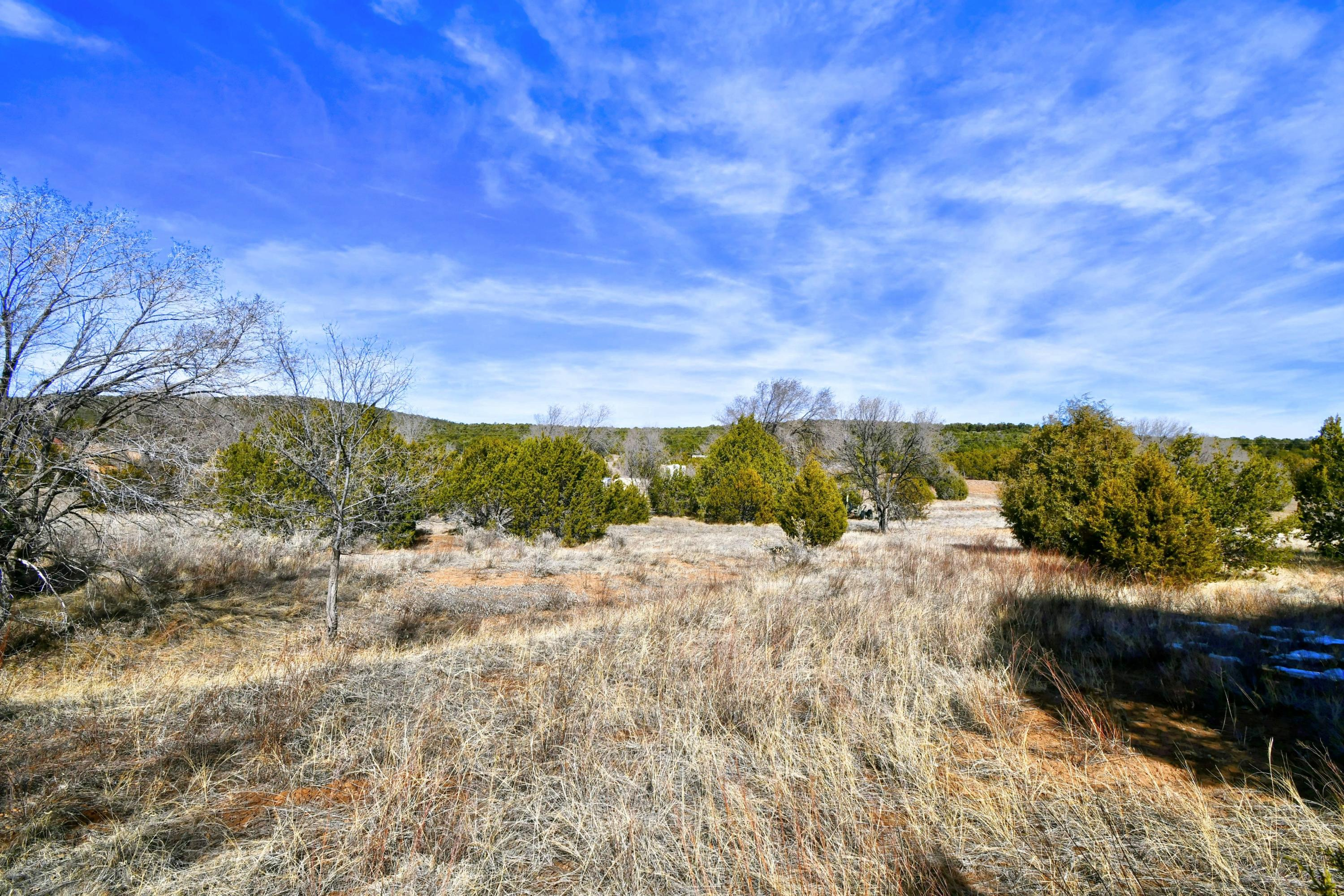 136 BRANNAN Road NE Property Photo - Tijeras, NM real estate listing