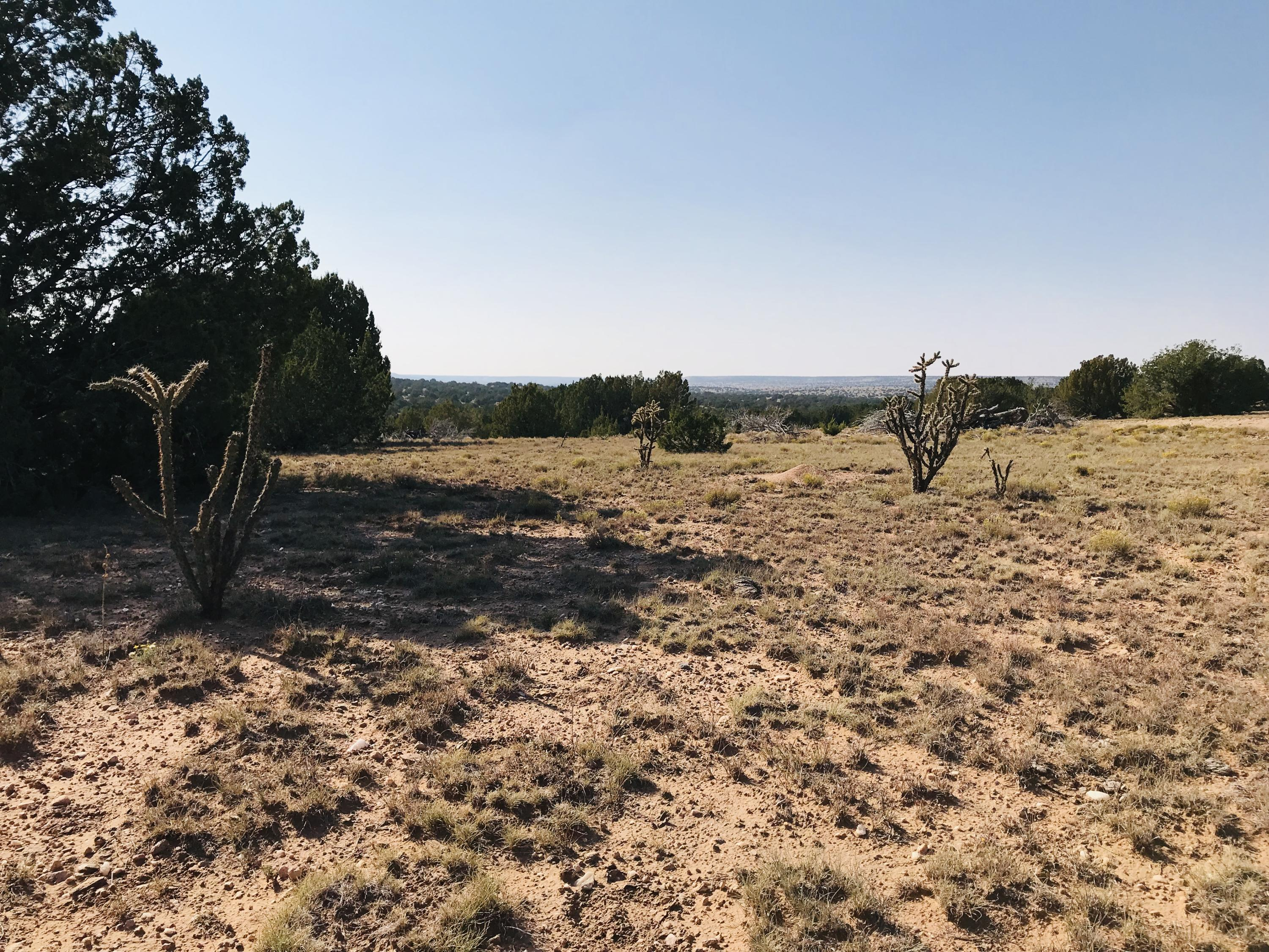 000 Los Novios Property Photo - Santa Rosa, NM real estate listing