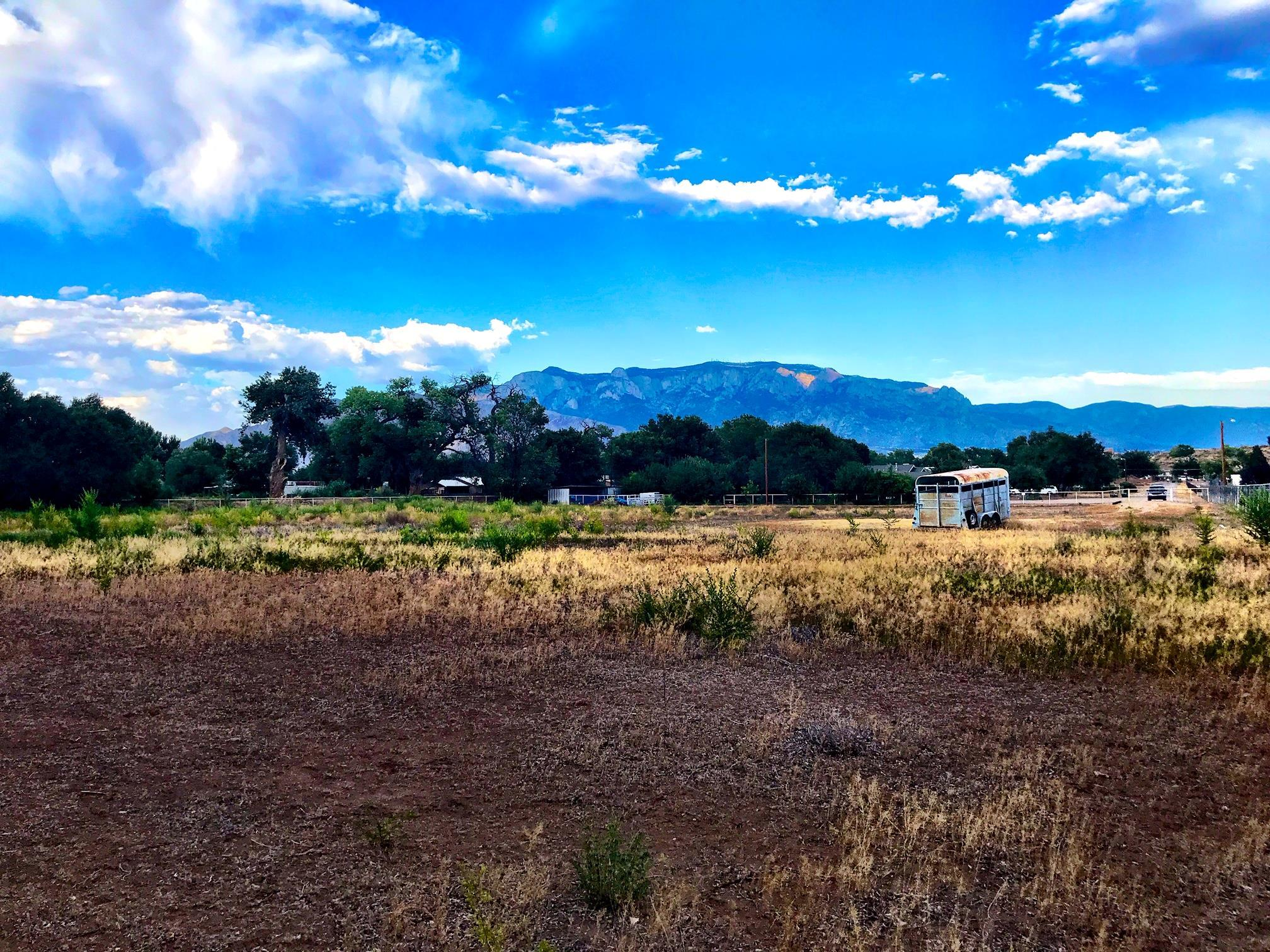 101 FLOWERS Road Property Photo - Albuquerque, NM real estate listing
