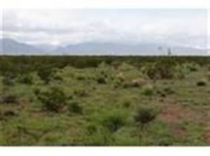 Los Novios Road Property Photo
