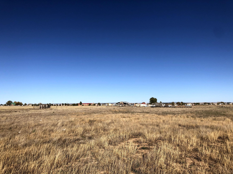 Teresa Lane Property Photo - Moriarty, NM real estate listing