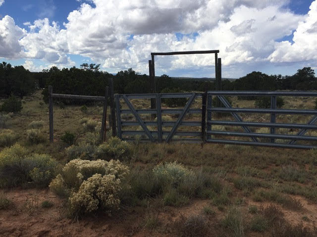 31 E Sawtooth Drive Property Photo - Pie Town, NM real estate listing