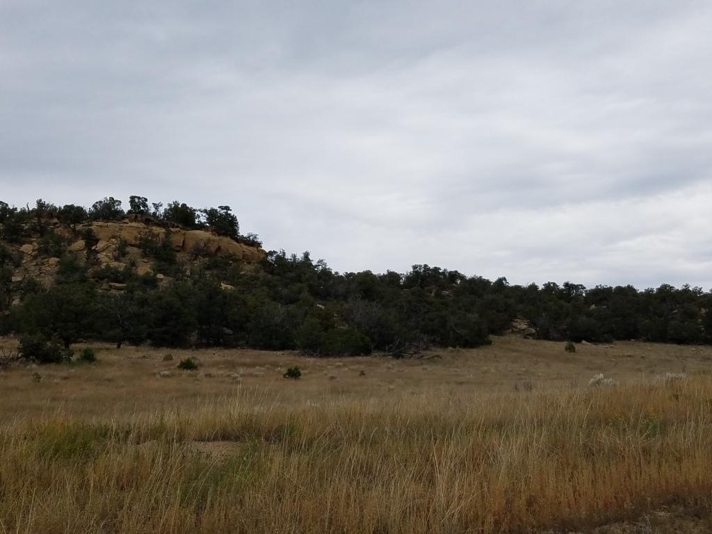U5 Lot 28 Wild Horse Ranch Property Photo