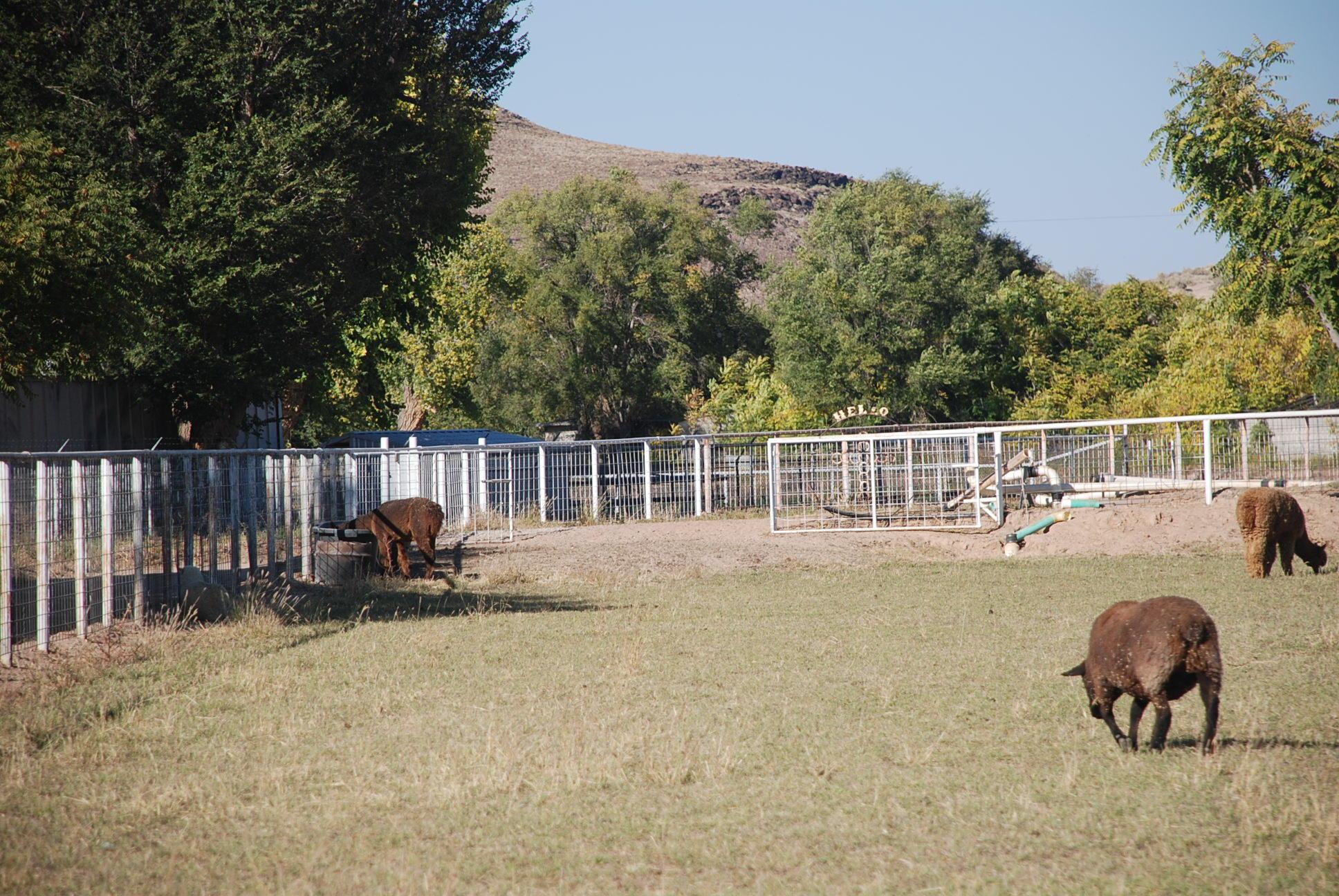 349 LA ENTRADA Road Property Photo - Los Lunas, NM real estate listing