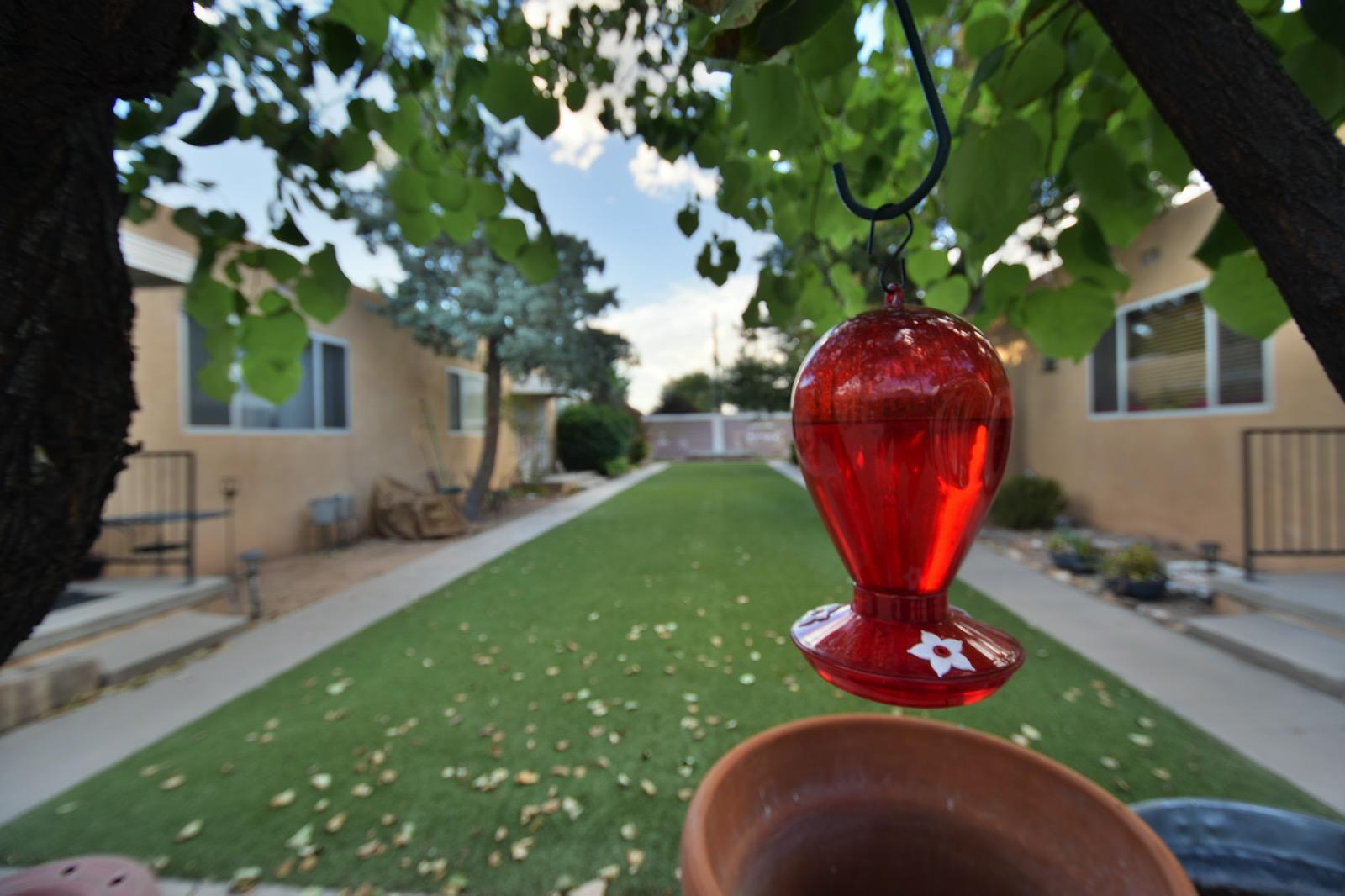 354 Pueblo Solano Road Nw Property Photo