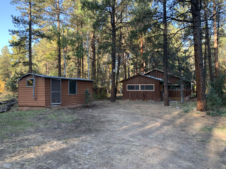 28 PRIVATE Drive Property Photo - Tierra Amarilla, NM real estate listing