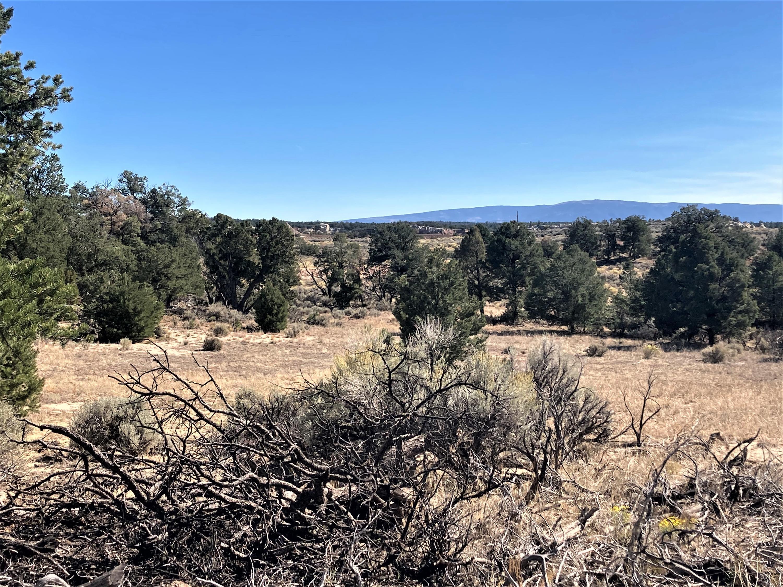 Badland Vista - Hunt or Camp Property Photo - Lindrith, NM real estate listing