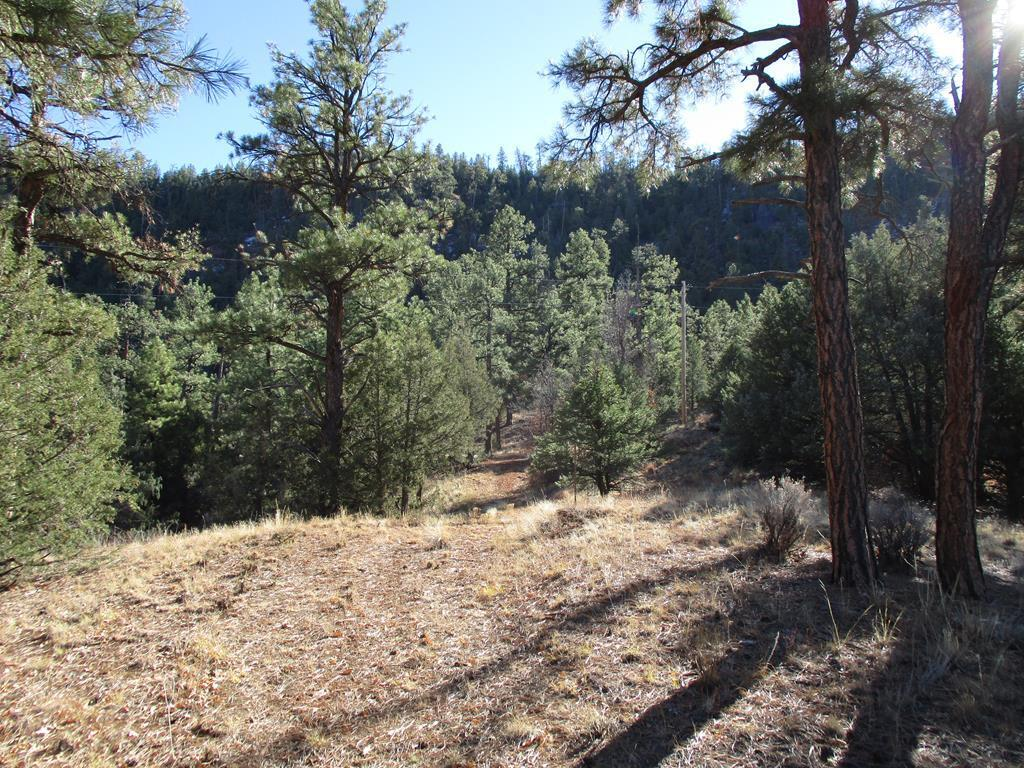 Lot 9 Cliffrose Court Property Photo - Ramah, NM real estate listing