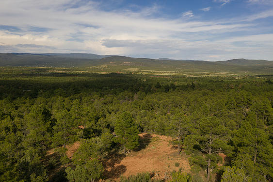225 Wildflower Property Photo - Rowe, NM real estate listing
