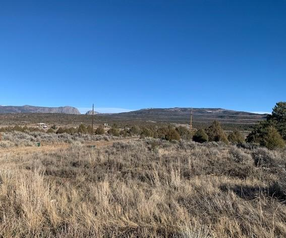 A-4 South Tract Property Photo - Tierra Amarilla, NM real estate listing