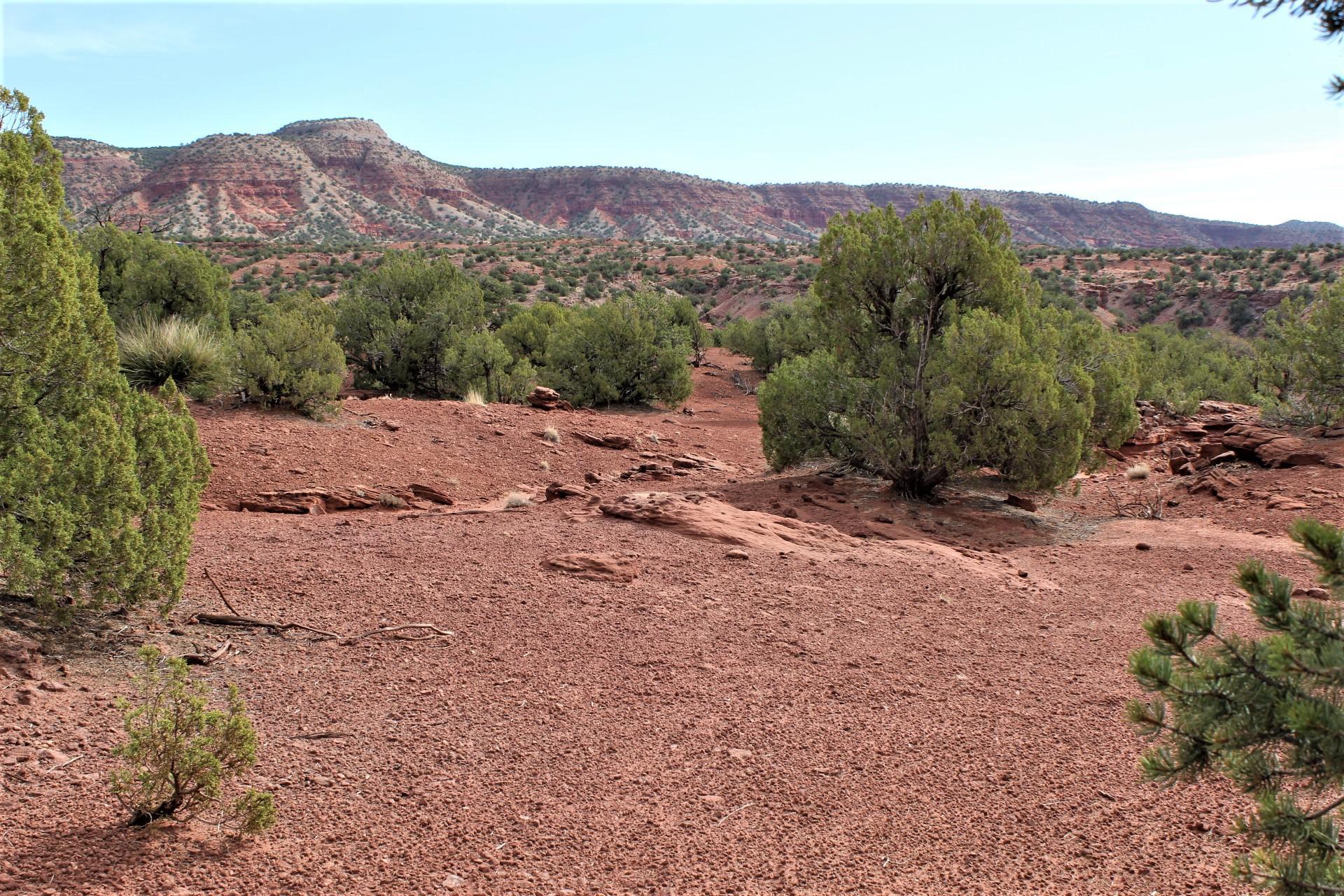 Vista Hermosa @ Cercado Road Property Photo - Jemez Pueblo, NM real estate listing