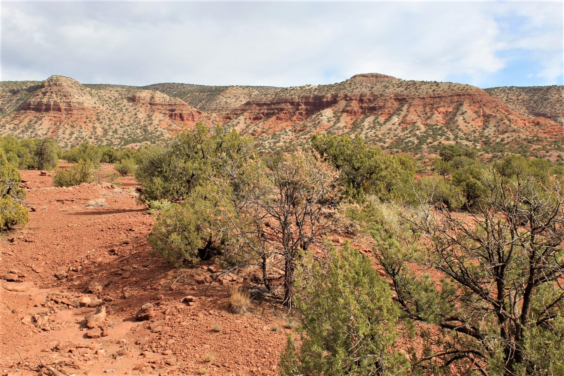 Cercado Road Property Photo - Jemez Pueblo, NM real estate listing
