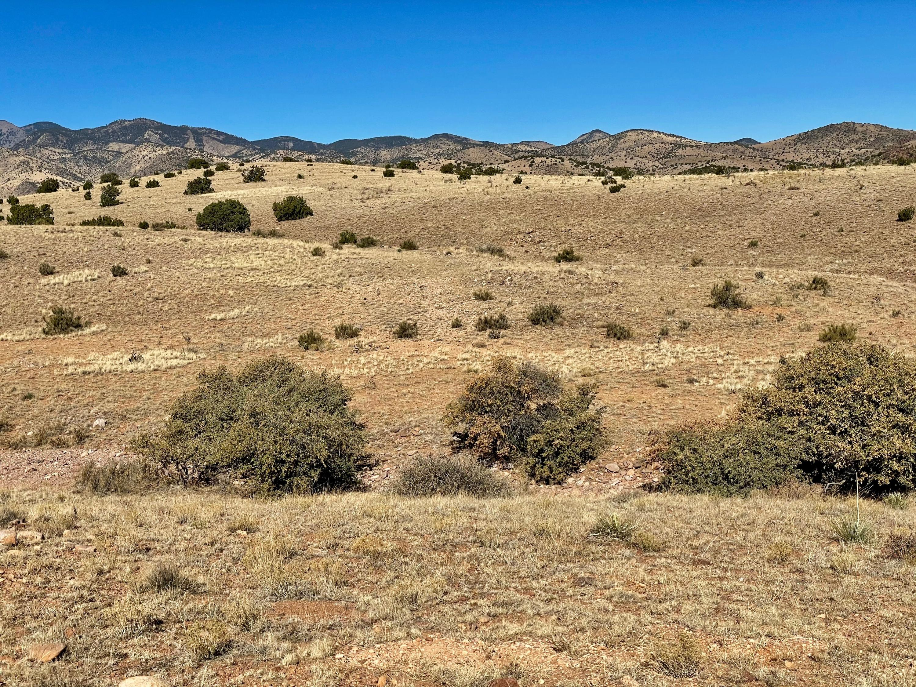 2A Willow Springs Ranch Property Photo - San Antonio, NM real estate listing