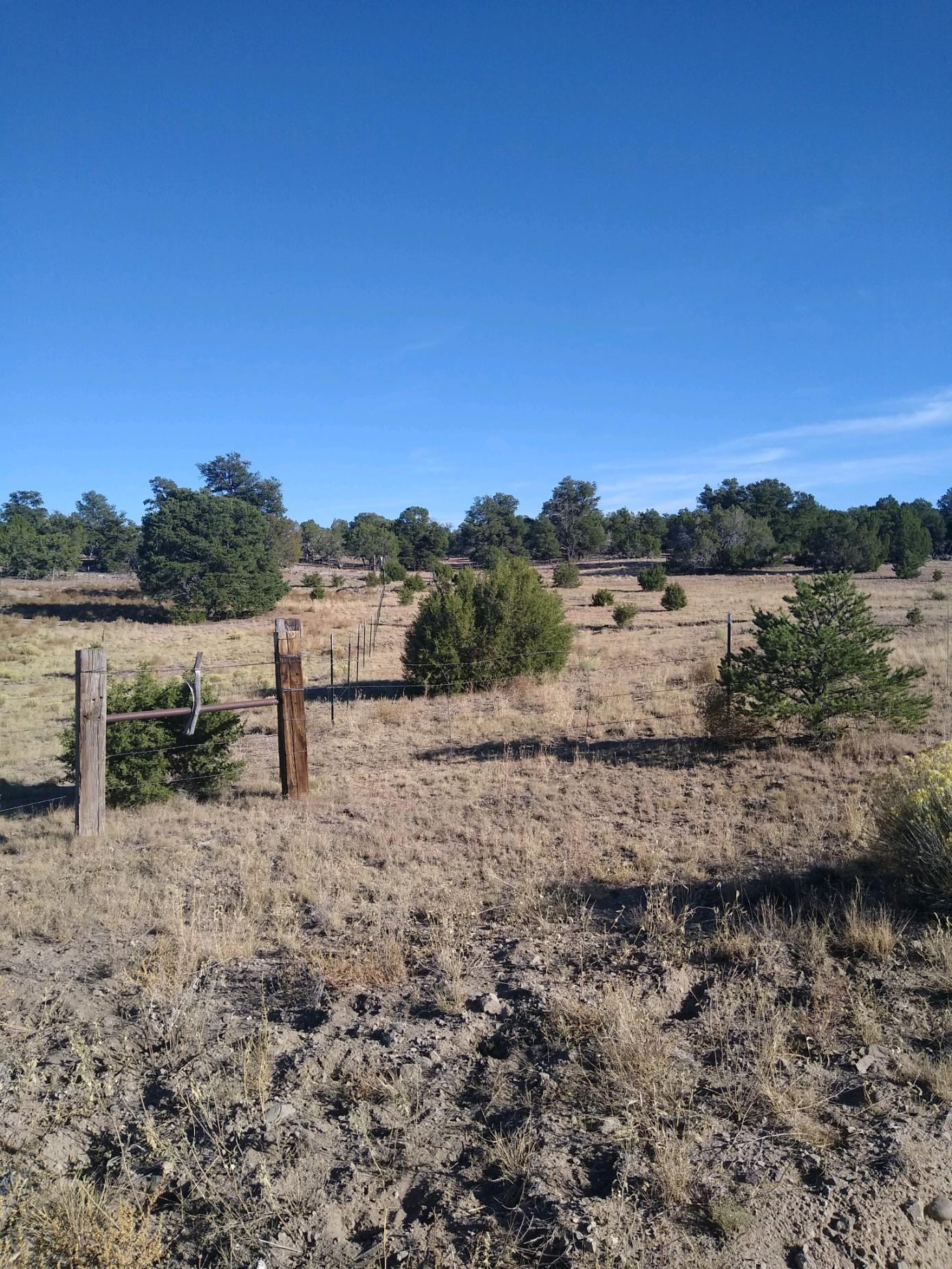 4 Rutter Ranch Property Photo - Datil, NM real estate listing