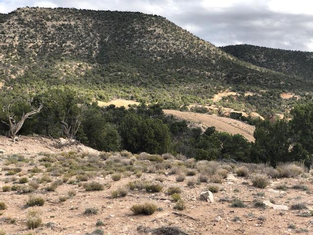 14 San Mateo Trail Property Photo - Mountainair, NM real estate listing