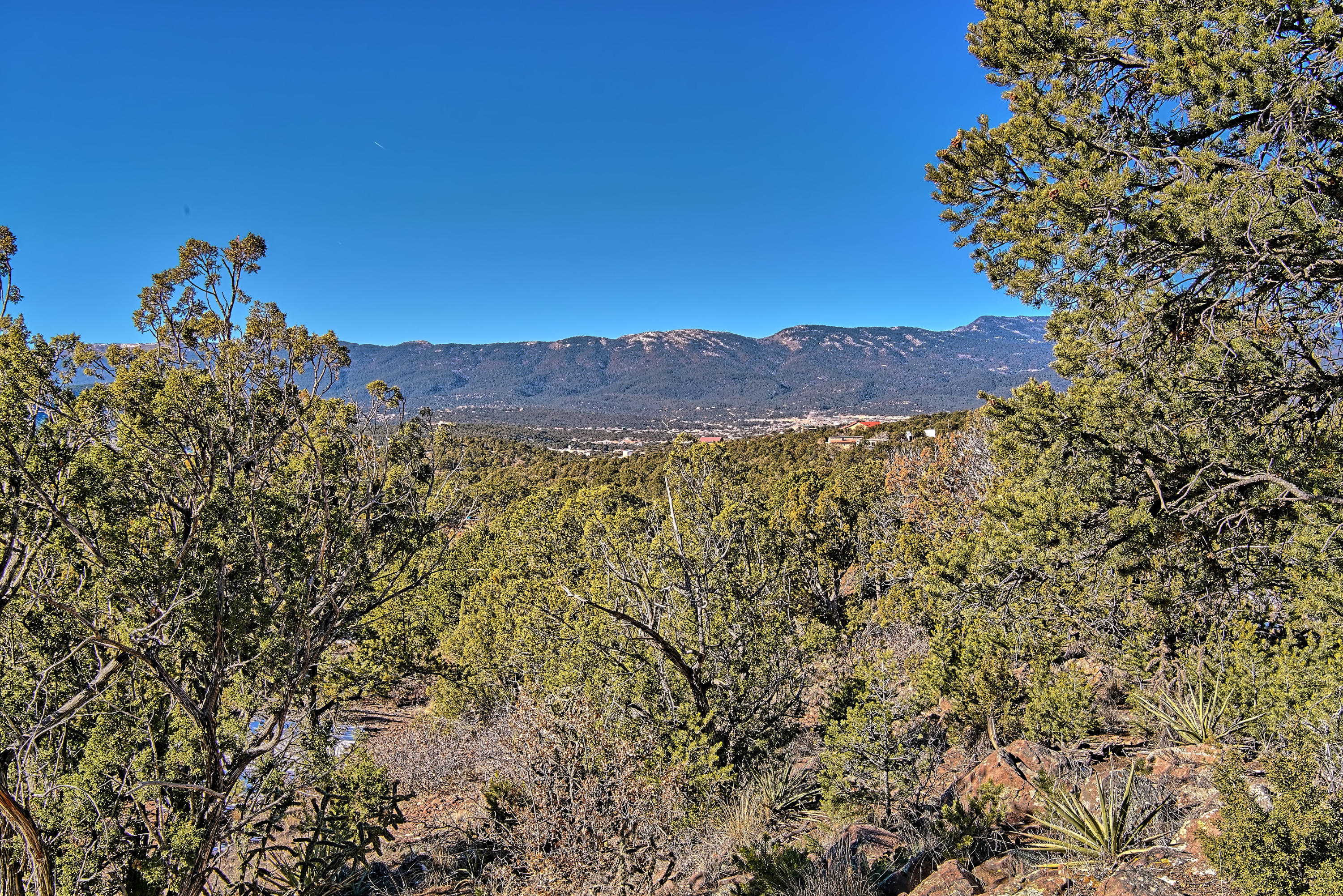 Concetta Court Property Photo - Sandia Park, NM real estate listing