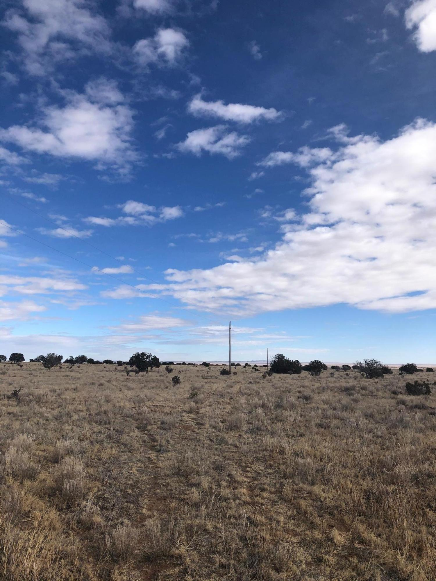 County Rd A052 Property Photo - Estancia, NM real estate listing