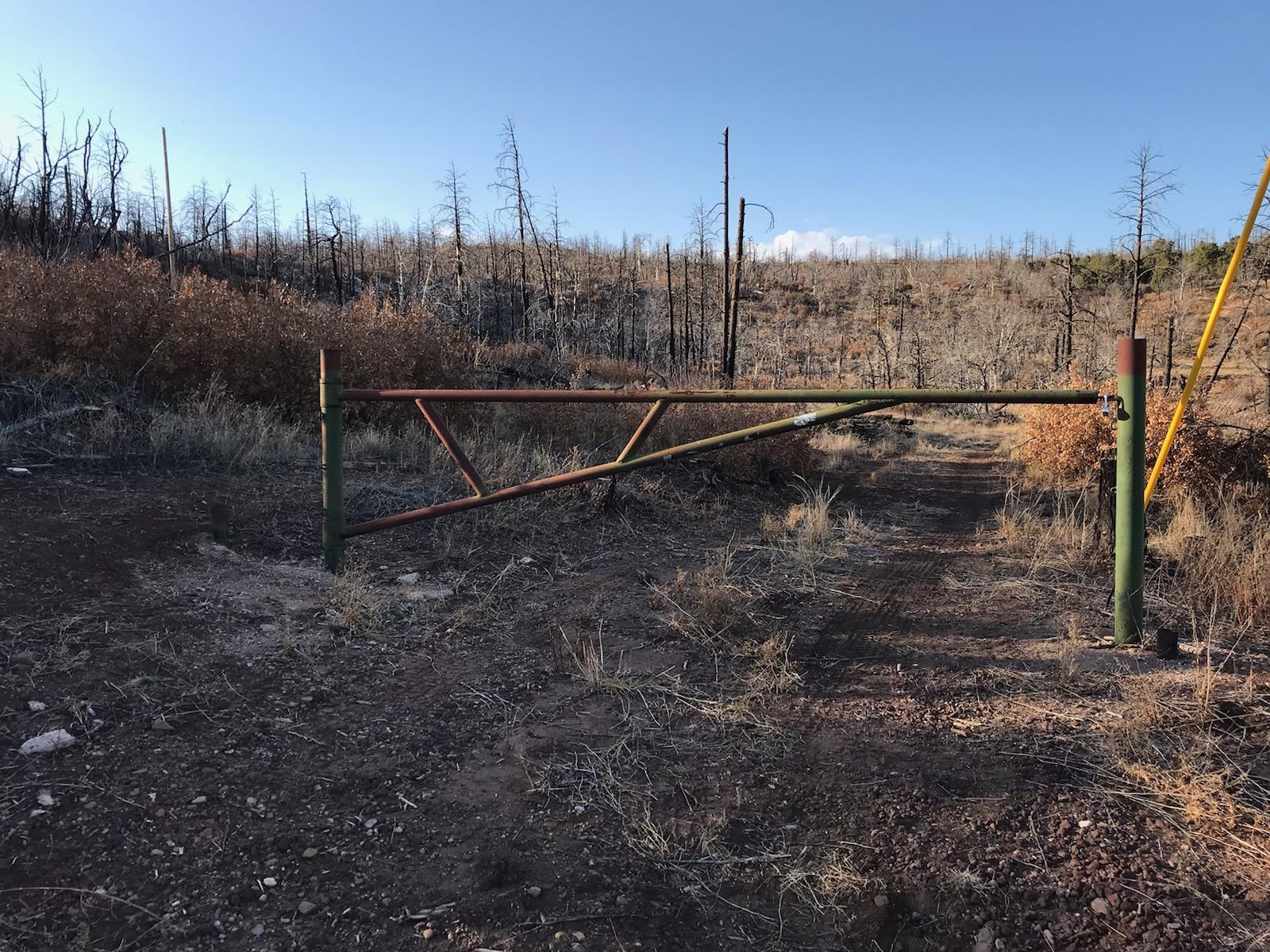 Columbine Ranch Real Estate Listings Main Image