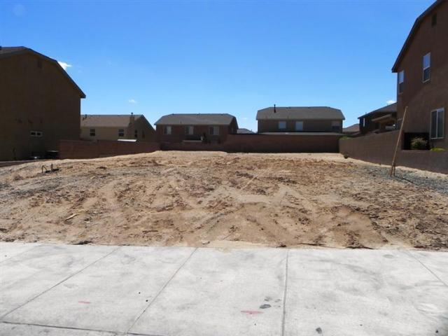 1131 FESTIVAL Road NW Property Photo - Los Lunas, NM real estate listing