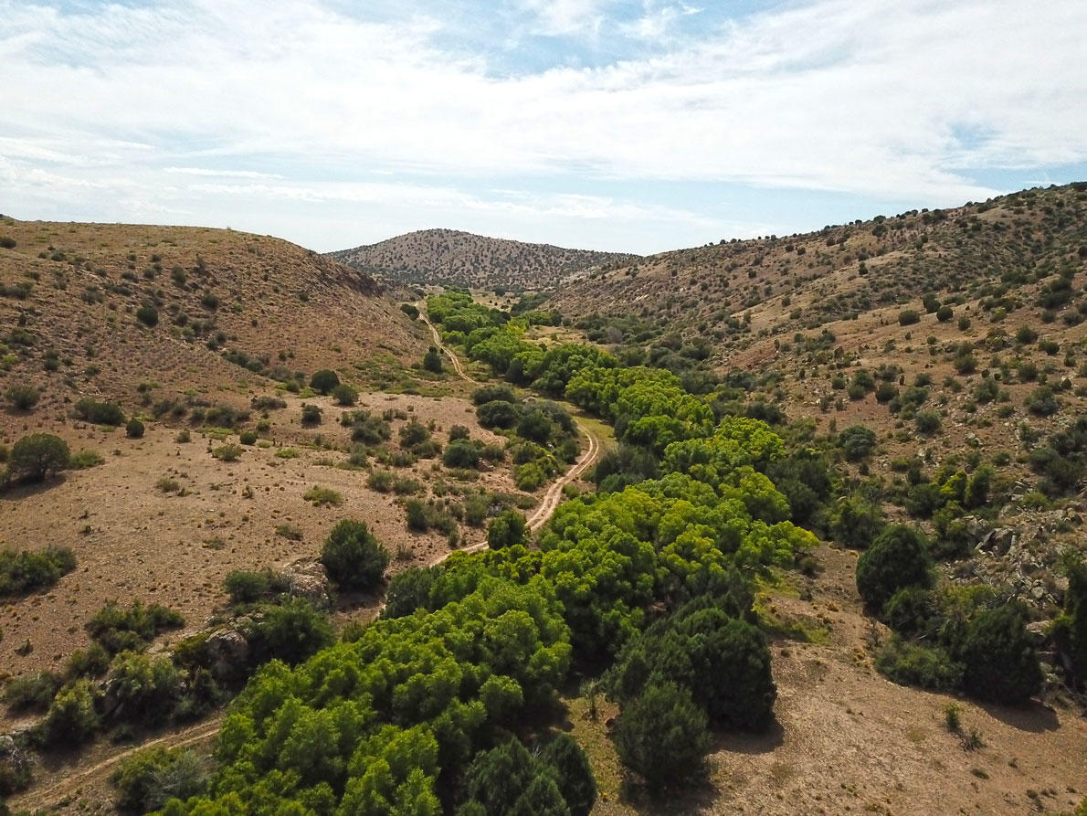 0 Separ Road Property Photo - White Signal, NM real estate listing