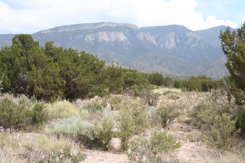 27 Apache Mesa Road Property Photo - Placitas, NM real estate listing