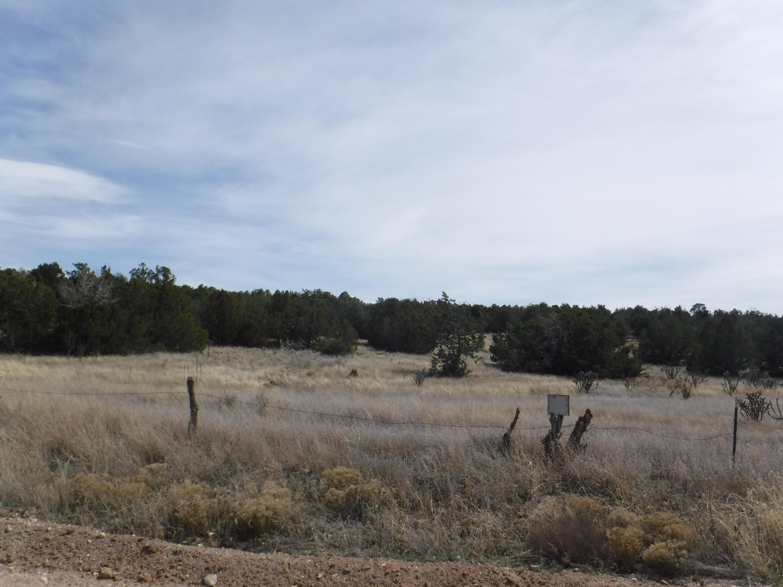 Martinez Road Property Photo - Edgewood, NM real estate listing